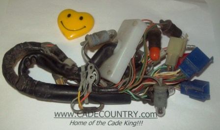 Instrument Panel / Display Wiring Harness