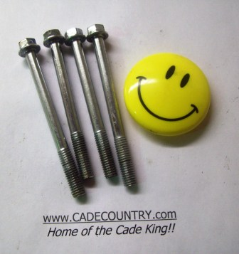 Secondary Drive Cover Bolts